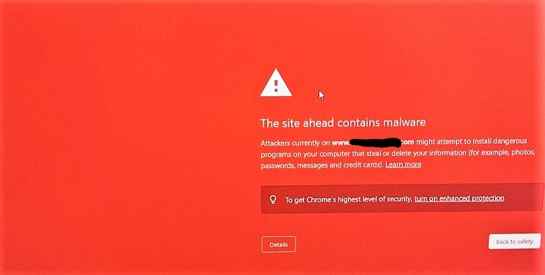 the site contains malware